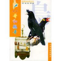 八哥和鹩哥王增年 ,莫玉忠 王增年著9787109061088中国农业出版社