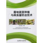露地蔬菜种植与病虫害防治技术