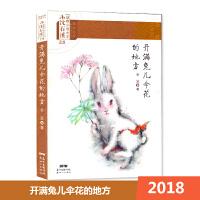 2018 沈石溪主编 动物小说大王系列 开满兔儿伞花的地方 新世纪出版社
