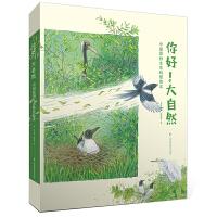 你好!大自然(中国原创生态科普绘本,共四册,当当独家定制)