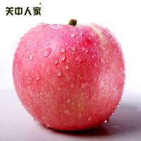 【陕西乾县馆】正宗陕西洛川红富士苹果礼盒装12颗大果包邮现摘现发