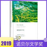 【2019诺贝尔文学奖得主作品】缓慢的归乡 奥地利作家彼得・汉德克著周新建译小说左撇子女人形同陌路的时刻 痛苦的中国人