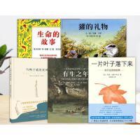 生命绘本全5册精装生命的故事獾的礼物当鸭子遇见死神有生之年一片叶子落下来适合3岁以上正版童书
