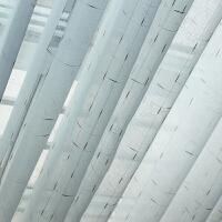 窗纱窗帘成品半遮光金丝麻纱 客厅书房卧室阳台书房餐厅通用