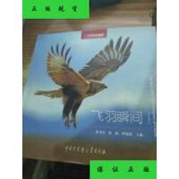 【二手旧书9成新】中国国家地理:飞羽瞬间(第2卷) /张书清,赵
