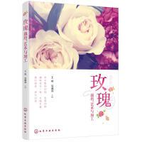 玫瑰 栽培 艺术与加工 玫瑰花栽培种植技术书籍 玫瑰月季花育种育苗培育设施书籍 玫瑰花精油提取制备工艺 玫瑰花保健品加工