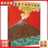 富士山大喷发,长江少年儿童出版社有限公司,(日)加古里子,9787556031344【新华书店】