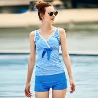 洲克(ZOKE) 泳衣 女士泳衣分体两件套泳装 遮肚显瘦温泉条纹游泳衣