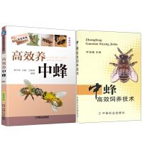 高效养中蜂+中蜂高效饲养技术 2册 中蜂蜜蜂养殖技术书籍 养蜂实用书籍手册 中华蜂土蜂中蜂饲养新技术 农业科学养殖技术