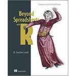 【预订】Beyond Spreadsheets with R: A Beginner's Guide to R and