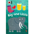 Early Learning: Big and Little 早教系列:大和小 ISBN 9781409301783
