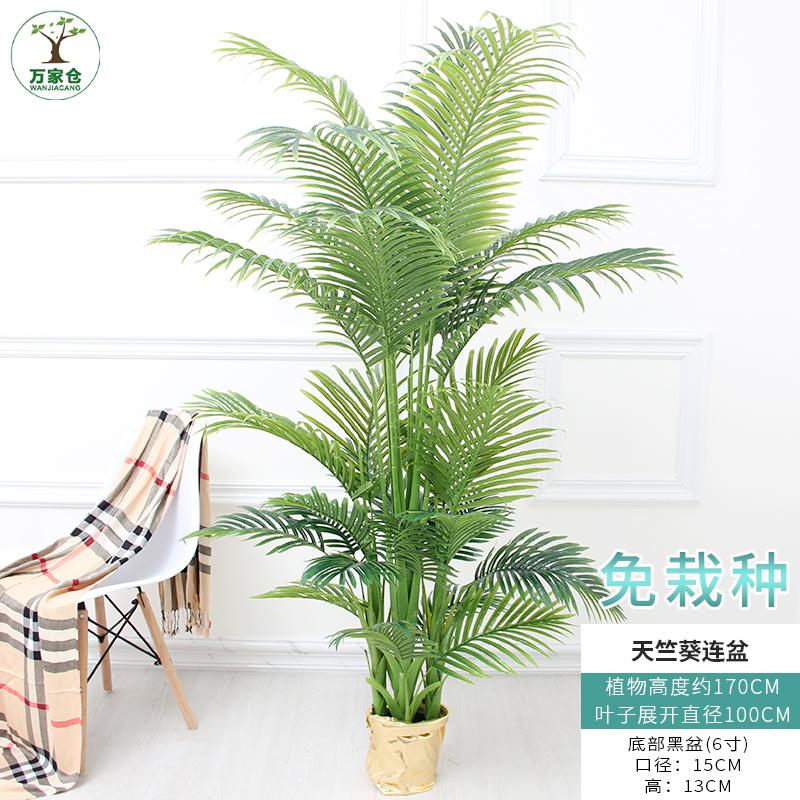 仿真植物盆栽椰子竹子客厅摆设假花大型散尾葵假树室内装饰落地花 发货周期:一般在付款后2-90天左右发货,具体发货时间请以与客服协商的时间为准