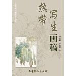 热带写生画稿(8K) 刘龙耀/安维奎 暂无 9787554702246