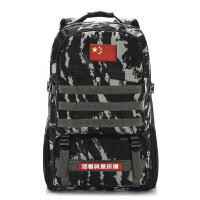 旅行包大容量迷彩背包双肩包女军背包男户外登山包战术背包