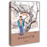 我的名字叫丫头(小荷工作坊原创儿童文学)刘玉栋长篇少年成长小说 精美插画儿童心灵成长培养阅读写作能力 学生课外读物儿童
