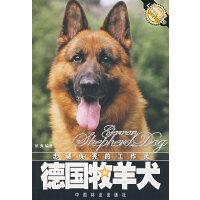 忠诚优秀的工作犬:德国牧羊犬 侯爽 中国林业出版社