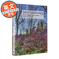 Deep Learning 深度学习/机器学习【英文原版,计算机科学与人工智能领域奠基性的经典教材】