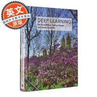 Deep Learning 深度学习 英文原版 机器学习英文 计算机科学与人工智能领域奠基性的经典教材