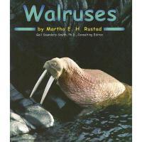 【预订】Walruses 进口原版 9780736834162