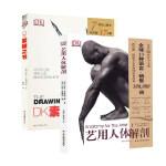 全2册艺用人体解剖 DK素描之书 人体结构肖像动物静物人物绘画诀窍 素描大师作品集临摹 美术艺考教程完全指南实用教学