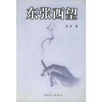 【新书店正版】东张西望艾丹9787500821847工人出版社