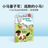 进口原版 Pony Scouts: Runaway Ponies! 小马童子军:小马快跑!