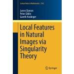 【预订】Local Features in Natural Images via Singularity Theory