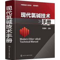 现代氯碱技术手册 化学工业出版社