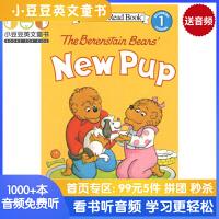 英文原版 The Berenstain Bears' New Pup 贝贝熊的新狗狗