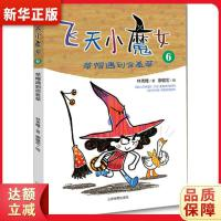飞天小魔女6 9787532897018 林秀穗 山东教育出版社 新华书店 正品保障