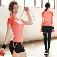 简约修身女士瑜伽服上衣 网纱拼接跑步服健身服 新款女运动速干显瘦瑜珈t恤