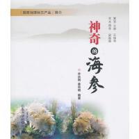 【二手旧书9成新】神奇的海参 乔洪明,姜宗明著 山东大学出版社 9787560742519