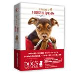 一条狗的使命:只想陪在你身边(当当限量版,随书附赠狗狗超萌立体纸模)