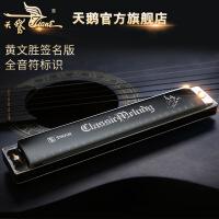 天鹅口琴24孔初学者儿童c调专业复音口琴自学演奏乐器