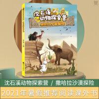 沈石溪动物探索营――撒哈拉沙漠探险 明天