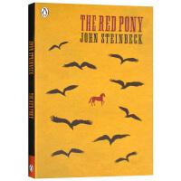 华研原版 小红马 英文原版 The Red Pony 诺贝尔文学奖作家 约翰斯坦贝克 英文版进口英语书籍正版现货