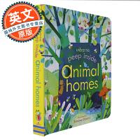 偷偷看里面 动物的家 英文原版绘本 Peep Inside Animal Homes 纸板翻翻书 Usborne 机关