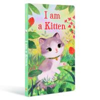 英文原版 我是一只小猫 I am a kitten 我是一只兔子同系列 3-6岁儿童启蒙入门绘本 撕不烂纸板书 萌猫童
