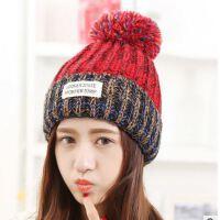 秋冬季新款针织帽子 女士韩版混色贴标加厚保暖毛线帽子