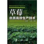 果树优质高效生产技术丛书--草莓优质高效生产技术