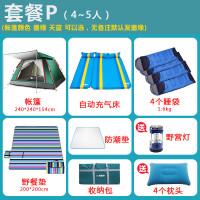 帐篷户外3-4人全自动二室一厅家庭野露营2人加厚防雨野外 套餐P (4-5人)
