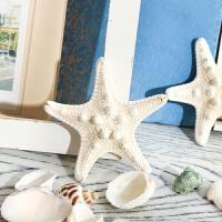 海螺贝壳饰品工艺品水族箱鱼缸造景小摆件创意装饰沙滩玩具