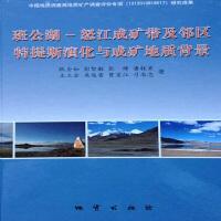 班公湖――怒江成矿带及邻区特提斯演化与成矿地质背景