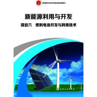 项目六 燃料电池开发与利用技术