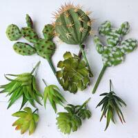 仿真多肉植物懒人套餐 绿色植物墙仿真花假花家居客厅装饰品摆件