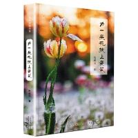5折特惠 为一朵花披上袈裟 全国中考热点作家美文典藏书系