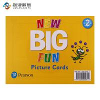 New Big Fun第二版 2级别教学大卡 原版进口培生朗文Picture Cards 教学卡片