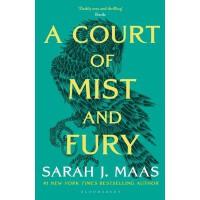 英文原版 A Court of Mist and Fury 仙灵王庭纪2:迷雾与怒火 青少年课外英语读物 (A Cour