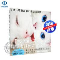 【现货】日本一寝�が酷い�~世の美猫セツちゃん 猫咪摄影