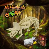 皮诺考古挖掘恐龙骨架化石 手工创意DIY玩具 骨骼恐龙拼装插模型